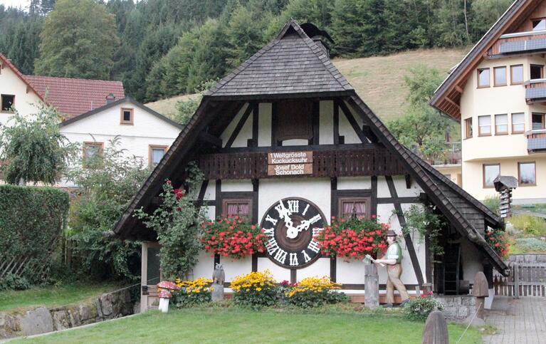 Schwarzwald Mitte (pur)